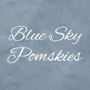 Blue Sky Pomskies