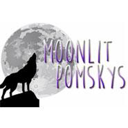 Moonlit Pomskys
