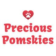 Prescious Pomskies